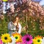 Аватар пользователя Елена Рожкова elena_v2006